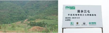 有用微生物技術を採用している栽培地の写真