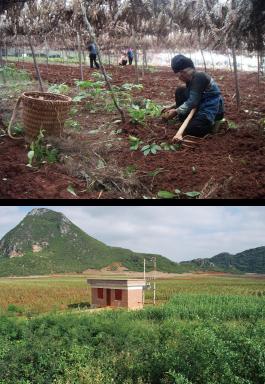 有用微生物技術土壌作りの様子