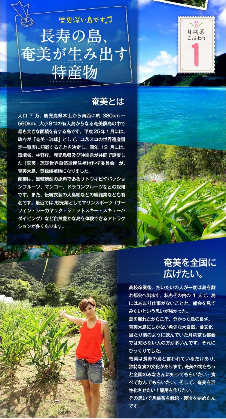 長寿の島、奄美が生み出す特産物