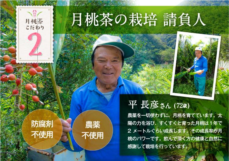 月桃茶の栽培請負人 平長彦さん