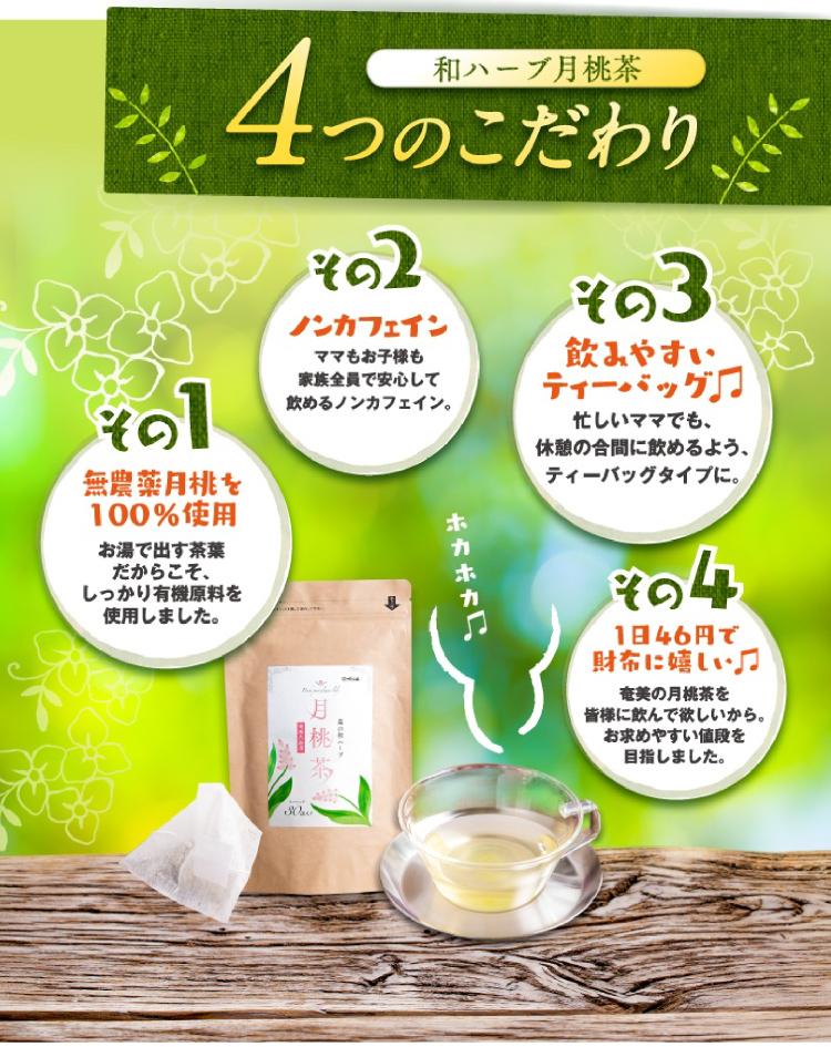 和ハーブ月桃茶の4つのこだわり 無農薬月桃を100%使用 ノンカフェイン 飲みやすいティーパック 1日46円で財布に嬉しい♪