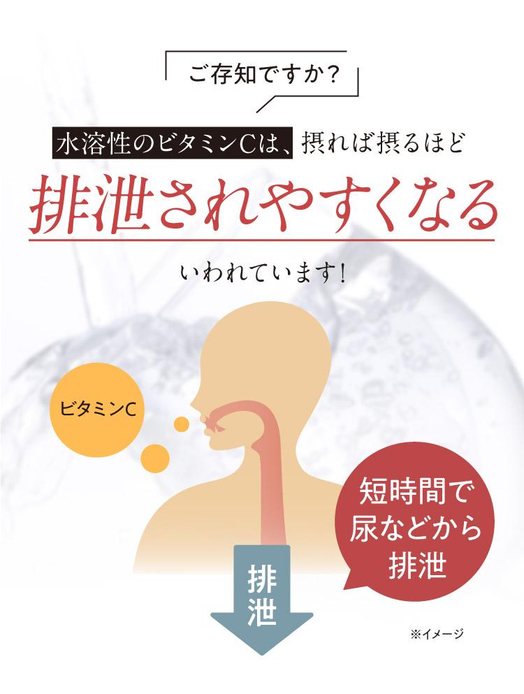 水溶性のビタミンCは、摂れば摂るほど排泄されやすくなる