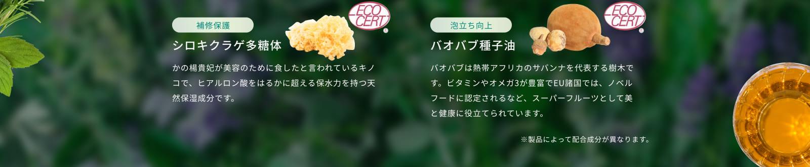 シロキクラゲ多糖体 バオバブ種子油