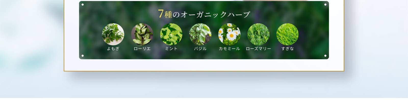 7種のオーガニックハーブ