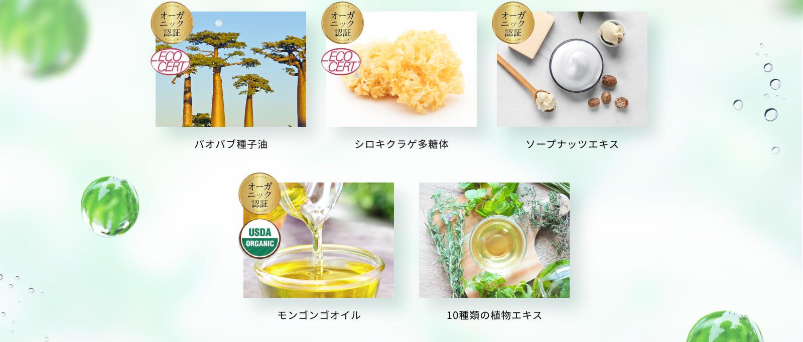 バオバブ種子油 など